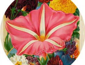 Giant Moonflower - Liberty Puzzles - 1