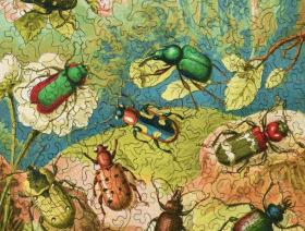 Beetles - Liberty Puzzles - 2