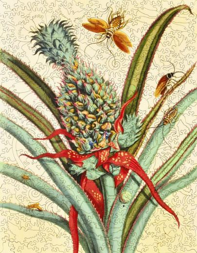 Pineapple with Insects - Liberty Puzzles - 8