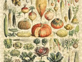 Vegetables and Plants - Liberty Puzzles - 2