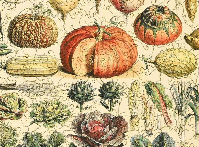 Vegetables and Plants - Liberty Puzzles - 12