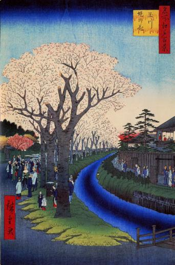 Blossoms on the Tama River Embankment - Liberty Puzzles - 6