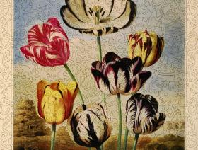 Tulips - Liberty Puzzles - 1