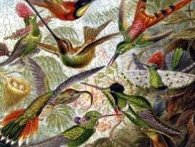 Hummingbirds - Liberty Puzzles - 2