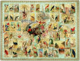 Birds of the Tropics - Liberty Puzzles - 2