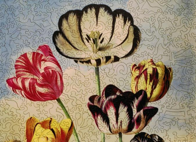 Tulips - Liberty Puzzles - 7