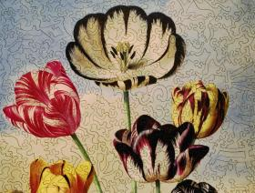 Tulips - Liberty Puzzles - 2