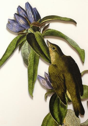 Connecticut Warbler - Liberty Puzzles - 8