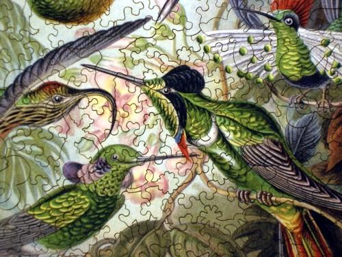 Hummingbirds - Liberty Puzzles - 8