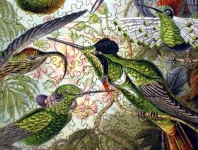 Hummingbirds - Liberty Puzzles - 3