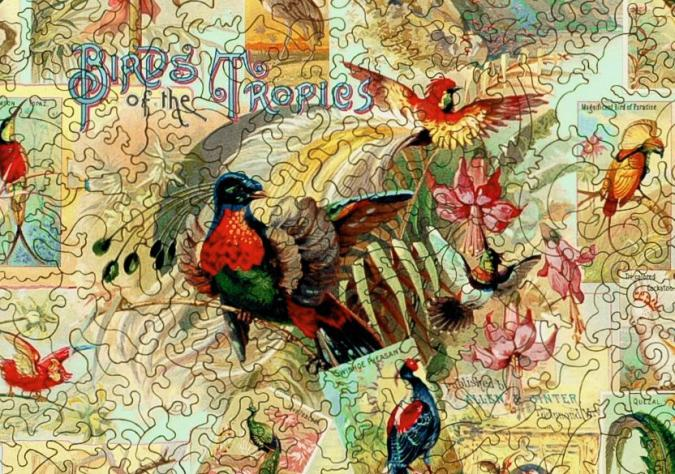 Birds of the Tropics - Liberty Puzzles - 8