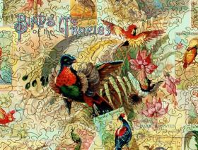 Birds of the Tropics - Liberty Puzzles - 3