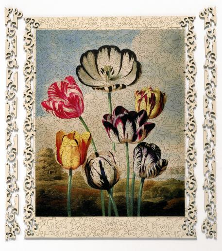 Tulips - Liberty Puzzles - 8