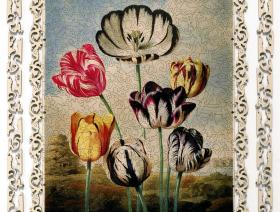 Tulips - Liberty Puzzles - 3