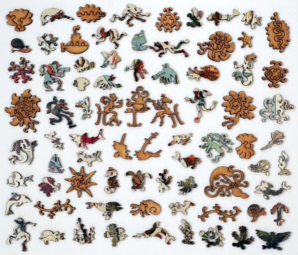 Varieties of Molluscs - Liberty Puzzles - 10