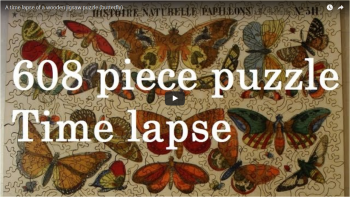 A time lapse of a wooden jigsaw puzzle (butterfly)