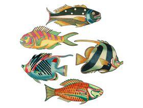 Colorful Fish of the East Indies - Wooden Jigsaw Puzzle