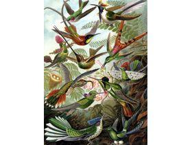 Hummingbirds Large Piece - Wooden Jigsaw Puzzle
