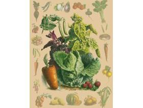 Vegetable Collage - Wooden Jigsaw Puzzle